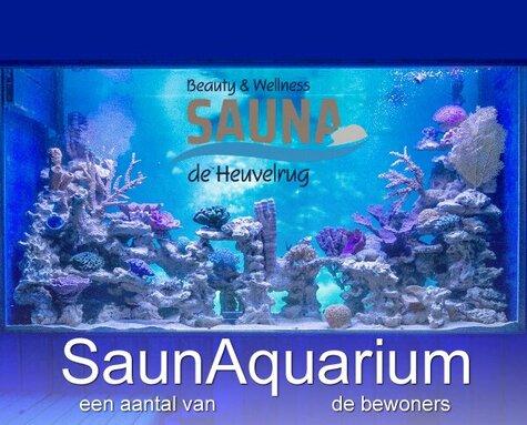 SaunAquarium