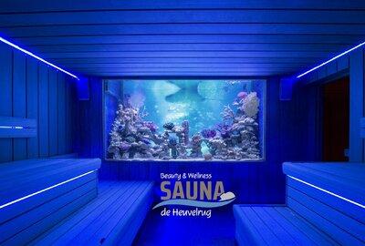 SaunAquarium met tropische zoutwater vissen